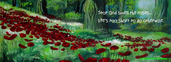 Poppy Field Facebook Timeline