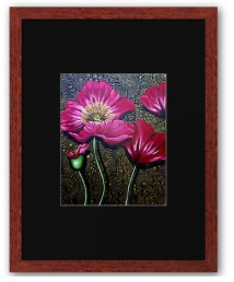 red poppy print framed