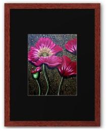 red poppy print framed