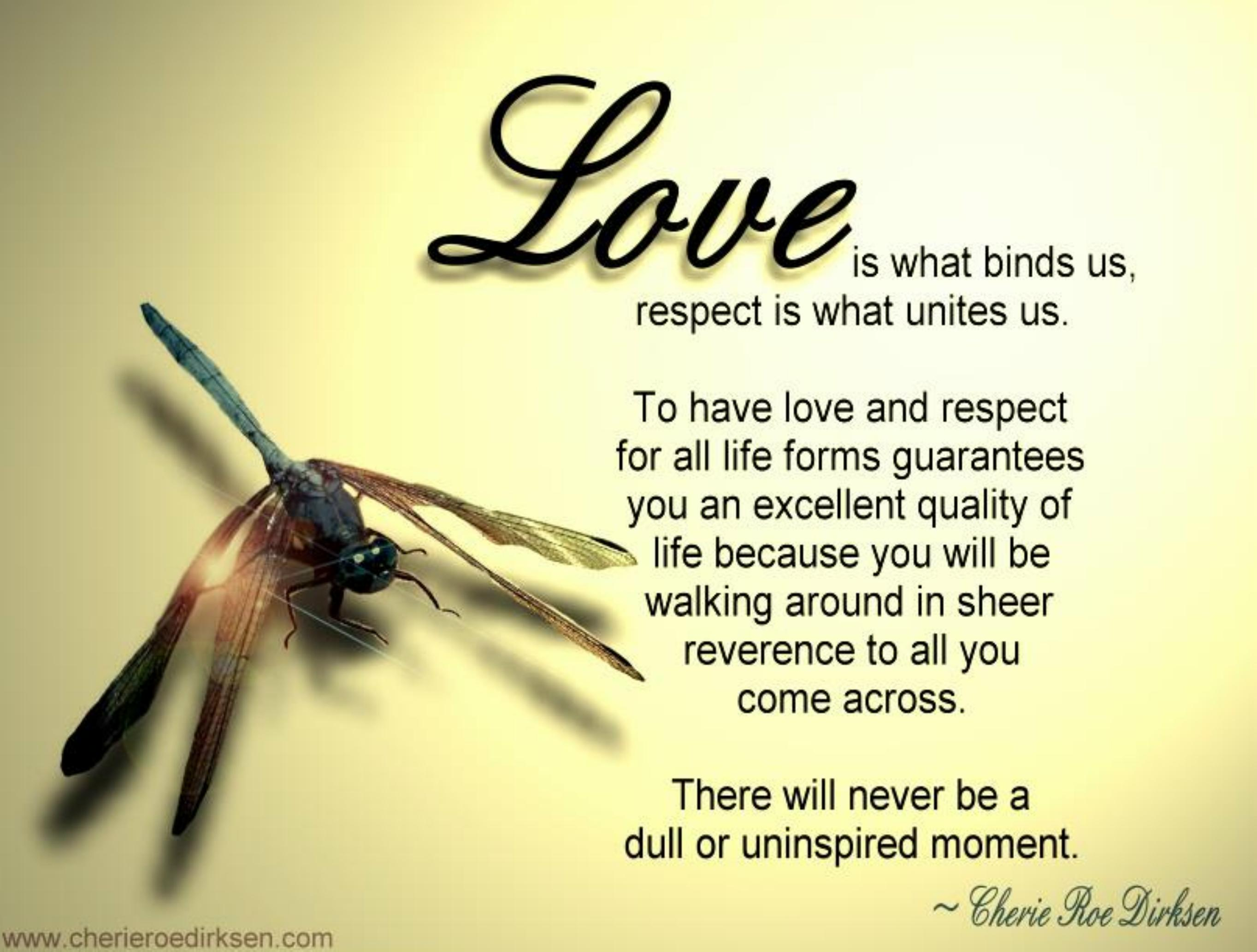 End Of Life Quotes Inspirational Love Quotes  Cherie Roe Dirksen