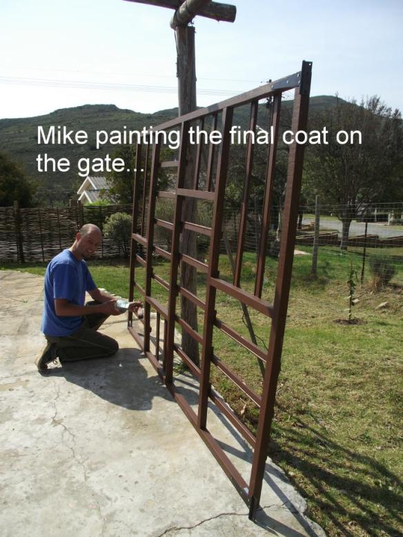 Mike and gate