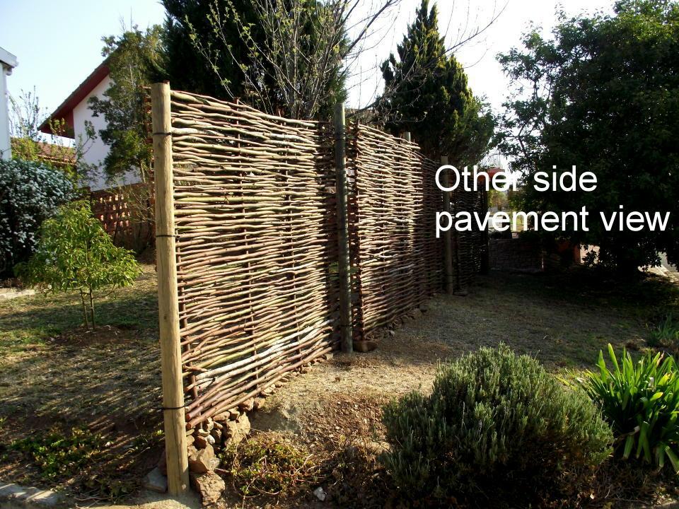 Pavement view 2