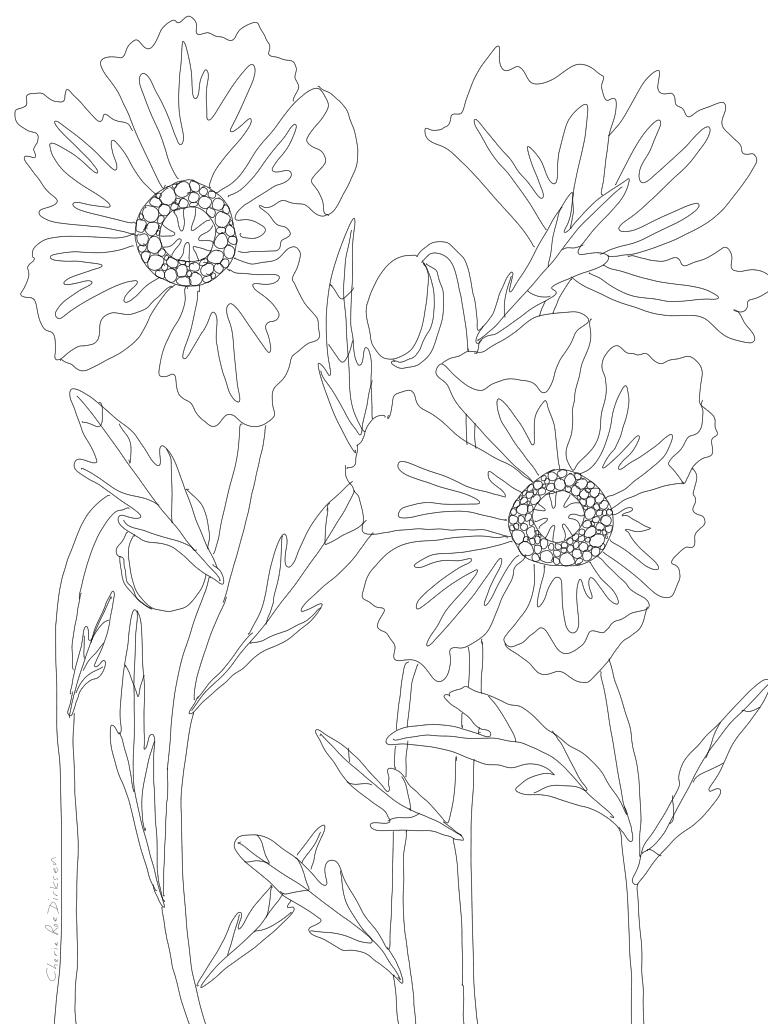 sketch1586274999610